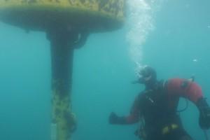 Lucrari mentenanta balize mai 2014 Constanta - Nemo Pro Diving 010