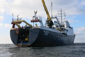 Mentenanta balize decembrie 2014 Constanta - Nemo Pro Diving 030