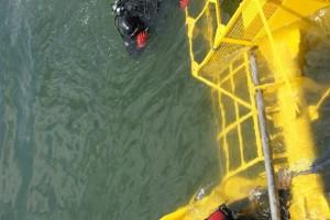 Montare baliza Mangalia 2013 - Nemo Pro Diving 004
