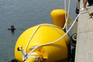 Montare baliza Mangalia 2013 - Nemo Pro Diving 009