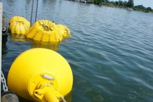 Montare baliza Mangalia 2013 - Nemo Pro Diving 013