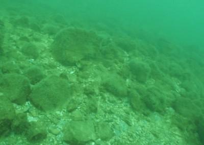 Montare si service conducte subacvatice - Nemo Pro Diving 008