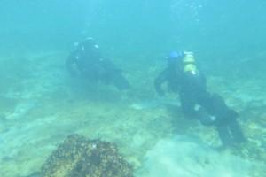 Scufundare la corabie in Eforie Sud decembrie 2014 - Nemo Diving Center 003