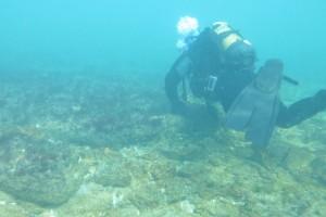 Scufundare la corabie in Eforie Sud decembrie 2014 - Nemo Diving Center 005