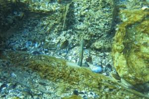 Scufundare la corabie in Eforie Sud decembrie 2014 - Nemo Diving Center 008