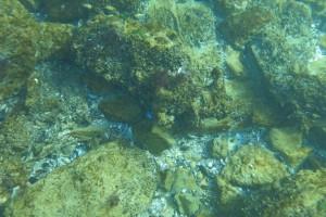 Scufundare la corabie in Eforie Sud decembrie 2014 - Nemo Diving Center 010