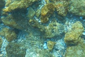 Scufundare la corabie in Eforie Sud decembrie 2014 - Nemo Diving Center 014