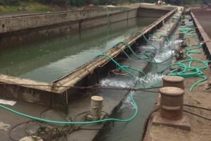ramfulare barja pe canalul Dunare-Marea Neagra la Cochirleni - Nemo Pro Diving 014