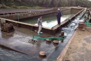 ramfulare barja pe canalul Dunare-Marea Neagra la Cochirleni - Nemo Pro Diving 015