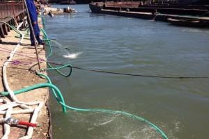 ramfulare barja pe canalul Dunare-Marea Neagra la Cochirleni - Nemo Pro Diving 208