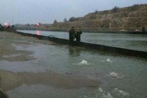 ramfulare barja pe canalul Dunare-Marea Neagra la Ovidiu - Nemo Pro Diving 003