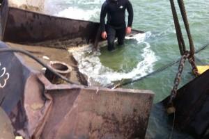 ramfulare barja pe canalul Dunare-Marea Neagra la Ovidiu - Nemo Pro Diving 006