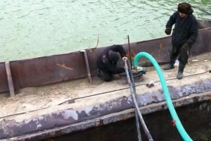ramfulare barja pe canalul Dunare-Marea Neagra la Ovidiu - Nemo Pro Diving 007
